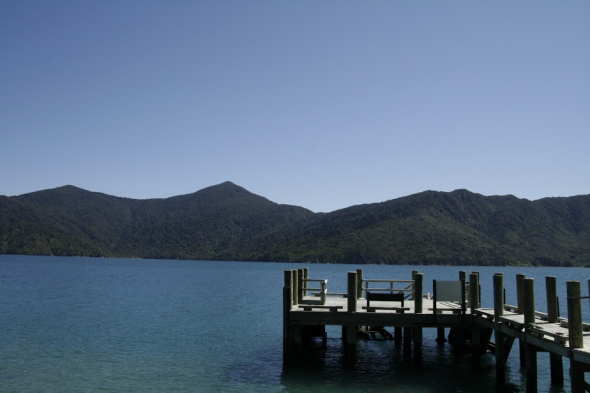 View of Ship Cove in Queen Charlotte sound from the jetty at Motuara Island. Photo: Adelie Filippi; Copyright Te Papa.
