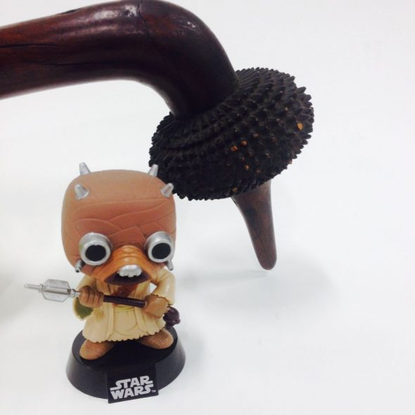 Pop! Star Wars Tusken raider Vinyl Bobble head with totokia, Fiji.