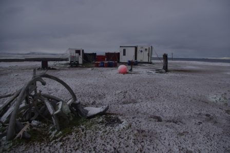 Cap Cotter in snow. Image by Colin Miskelly, copyright IPEV/Te Papa