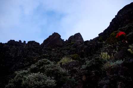 The twin sentinels guarding La Vallie de la Deux Miche petrel colony. Image: Colin Miskelly, Te Papa