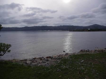 Hutt River mouth looking across to Petone Beach. If you wish to see a crabeater seal in New Zealand, your best bet is to visit this site, and wait approximately 25 years. Image: Colin Miskelly, Te Papa