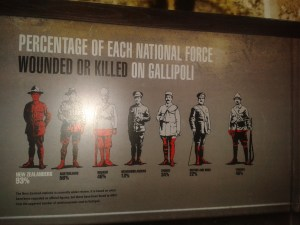 Comparative casulty rate on Gallipoli. Photograph by Kirstie Ross