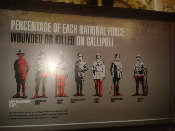 Comparative casualty rate on Gallipoli. Photograph by Kirstie Ross