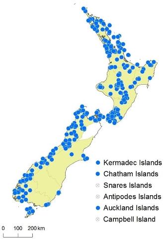 The eFloraNZ map for Hymenophyllum rarum. © Landcare Research 2016 CC-BY 3.0 NZ.
