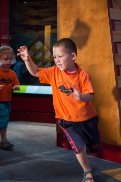 Dancing like a T. rex on the move! Photograph by Kate Whitley. Te Papa
