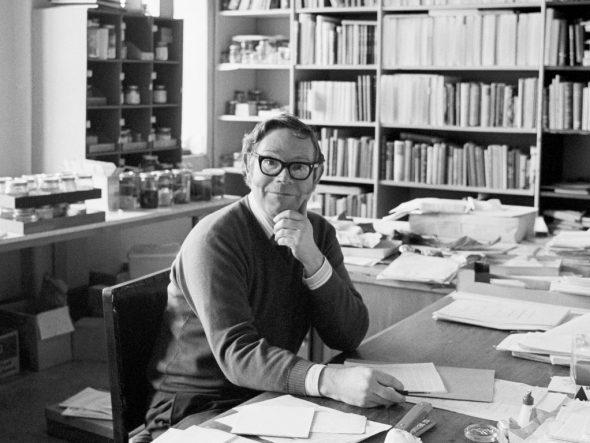 Dr John Yaldwyn, Assistant Director of the National Museum, 1976. Photograph by Trevor Ulyatt. Te Papa (MA_E.00350/32a)