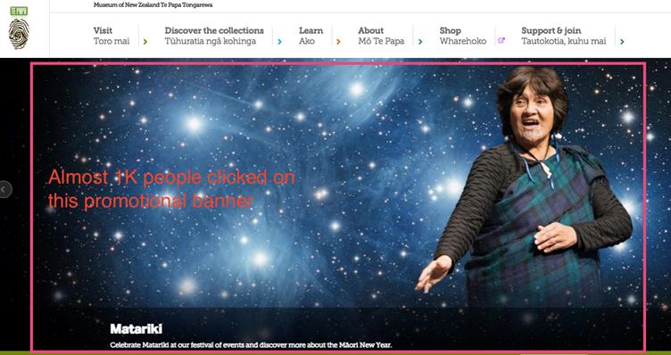 Image of Te Papa website July 2016