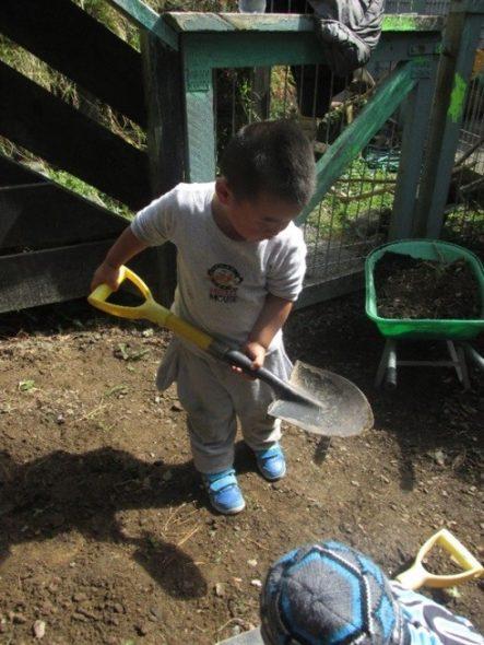 Preparing the soil. Photograph by Kiwi Kids, © Kiwi Kids