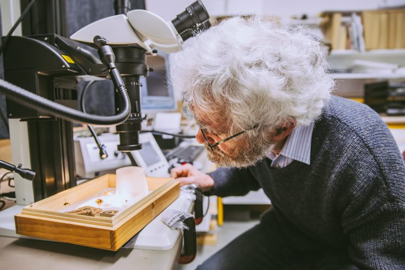Jean-Claude inspect some specimens under the new microscope, 2016. Te Papa.