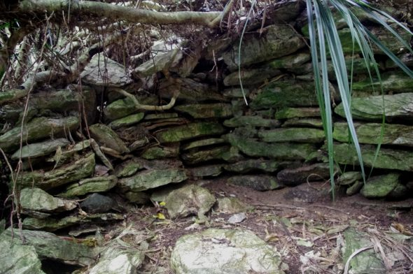 Remains of limestone slab shelter thought to date back to 1810, Taumaka, September 2016. Image: Colin Miskelly, Te Papa
