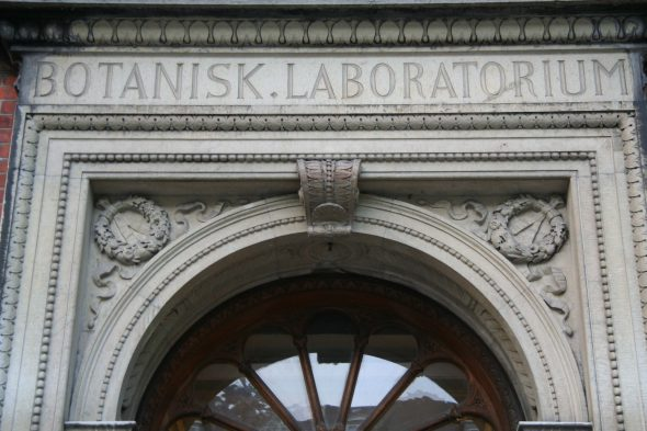 Detail on the door to the old Botanisk. Laboratorium building at the Copenhagen Botanic Garden. Although this building no longer houses botanists at the university, its architecture is still fitting at the botanic garden. Sept 2016. Photo by Heidi Meudt.