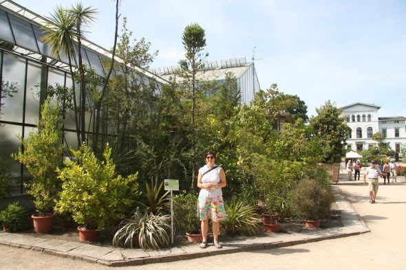 Me standing in front of the New Zealand section at the Bonn Botanic Gardens. Even the kauri is in a pot and will be brought into the glasshouses for the winter. Sept 2016.