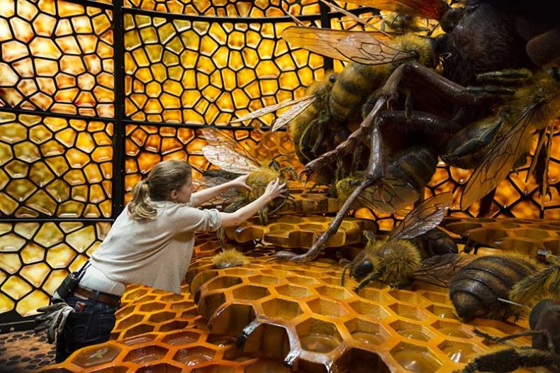Installing the giant bees, 2016. Courtesy of Weta Workshops