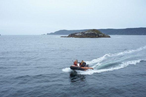 The Te Papa seabird survey team returning from Entry Island, Dusky Sound, November 2016. Image: Jean-Claude Stahl, Te Papa