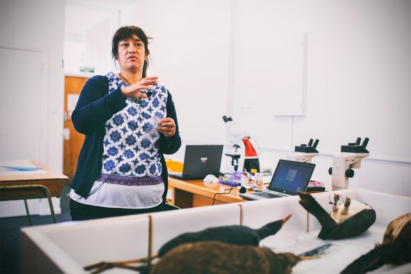 Hokimate Harwood leading a Feather Identification Workshop at Whanganui Regional Museum, 2016