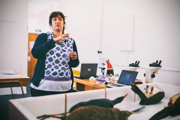 Hokimate Harwood leading a Feather Identification Workshop at Whanganui Regional Museum, 2016