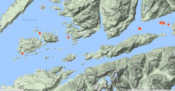 mottled-petrel-map