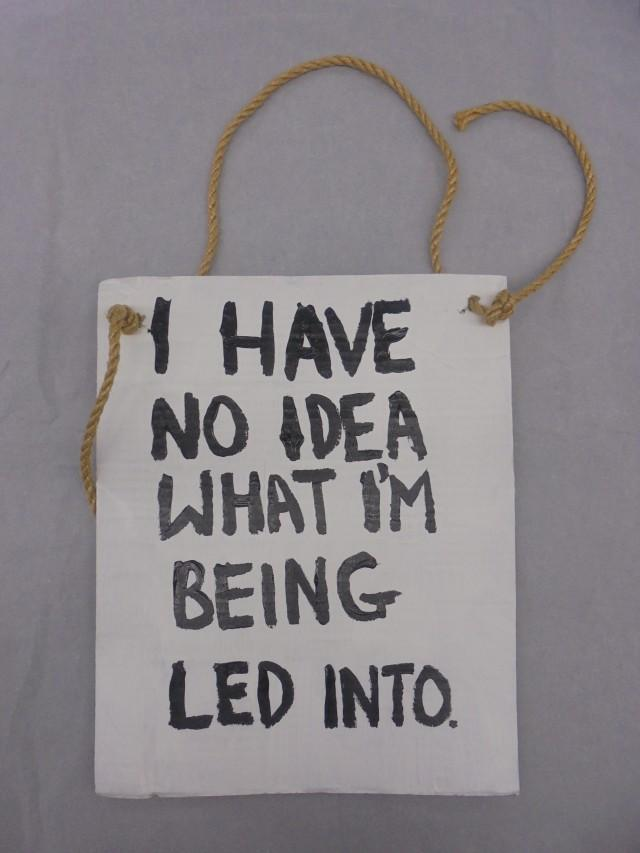 'I have no idea what I'm being led into' placard