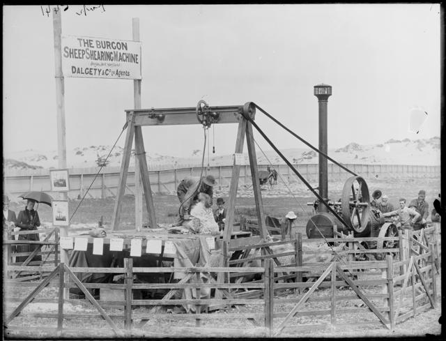 [Burgon sheep shearing machine], New Zealand, by Burton Brothers studio, maker unknown. Te Papa (C.017950)