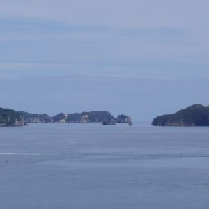 Part of the Motukawao island group. Gannets nest on Motukaramarama (Bush) Island on the left. Image: Colin Miskelly