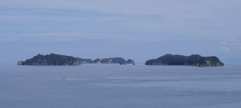 Part of the Motukawao island group. Gannets nest on Motukaramarama (Bush) Island on the left. Image: Colin Miskelly