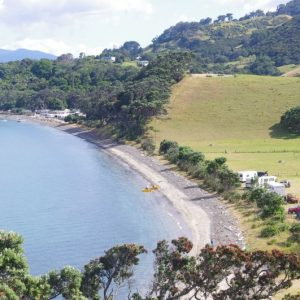 Papa Aroha beach. Image: Colin Miskelly