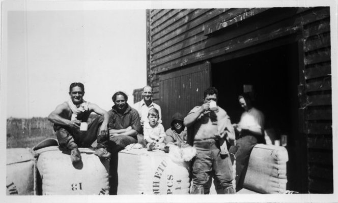 Shearers at Te Ore Ore, Masterton. Cook, Hinehauone Coralie, 1904-1993 :Photographs. Ref: PA1-q-377-57-6. Alexander Turnbull Library, Wellington, New Zealand. http://natlib.govt.nz/records/22760475