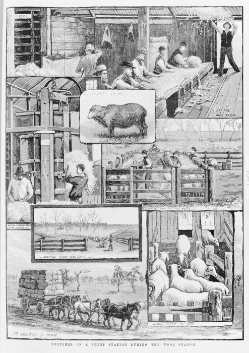 Illustrated New Zealand News: Sketches of a sheep station during the wool season. Illustrated New Zealand News, 24 December, 1883.. Illustrated New Zealand News. Dunedin, 1883-1887. Ref: PUBL-0110-1883-001. Alexander Turnbull Library, Wellington, New Zealand. http://natlib.govt.nz/records/22890939
