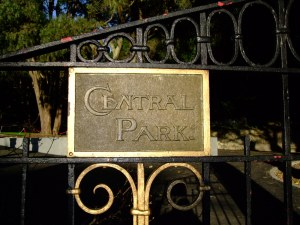 Central Park gate (deatil). 2008. Photogrpah by Kirste Ross