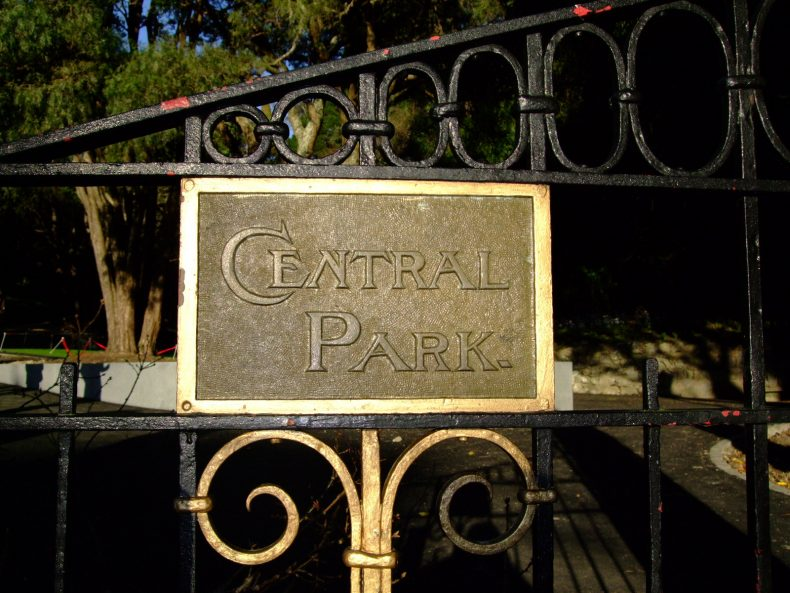 Central Park gates (detail), 2008. Photograph by Kirstie Ross