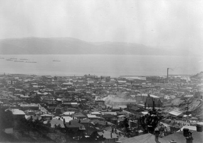 Overlooking Te Aro, Wellington, from below Brooklyn. Watt, T (Miss), fl 1978 :Photographs of Wellington and Napier scenes. Ref: 1/2-080470-F. Alexander Turnbull Library, Wellington, New Zealand. http://natlib.govt.nz/records/22716822