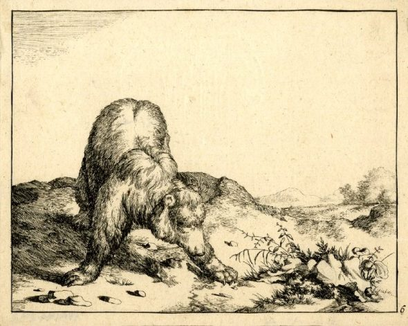 Bear Plate 6