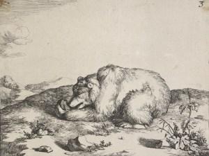 Bears Plate 3