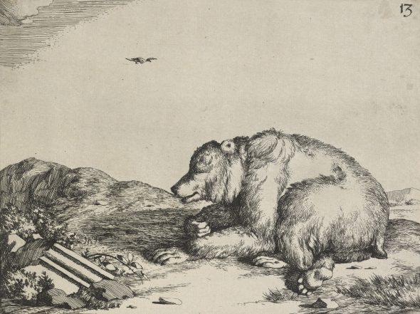 Bears plate 13