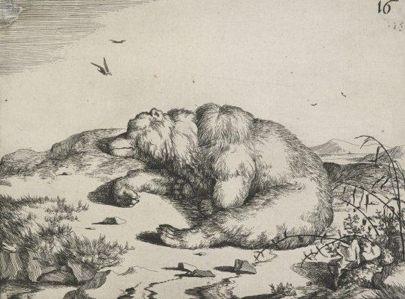 Bears plate 16