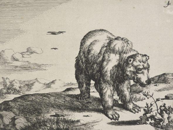 Bears plate 4