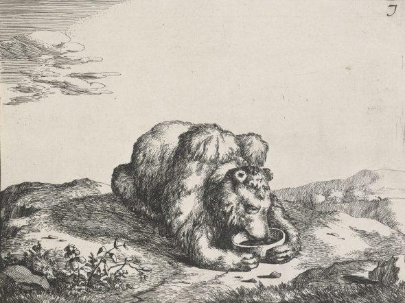 Bears plate 7