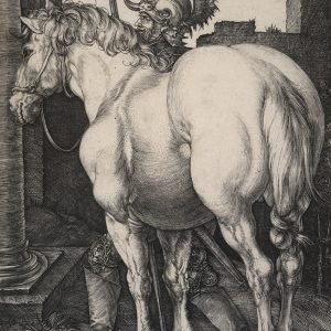 The large horse, 1505, by Albrecht Dürer. Gift of Sir John Ilott, 1962. Te Papa (1962-0001-9)