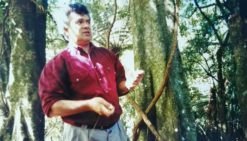 Man stands among forest-like trees
