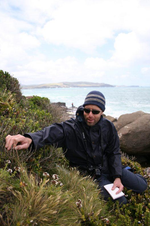 Man sits among the Myosotis rakiura