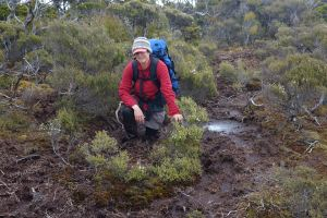 A little mud won't stop us finding the forget-me-nots... Although it might slow us down a bit. Here I am up to my knees in mud on the way to Doughboy Hut, Stewart Island! December 2016. Photo by John Barkla.