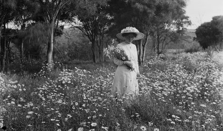 Woman stands in field of flowers holding a bunch of flowers