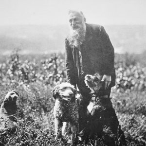 Rodin walking dogs
