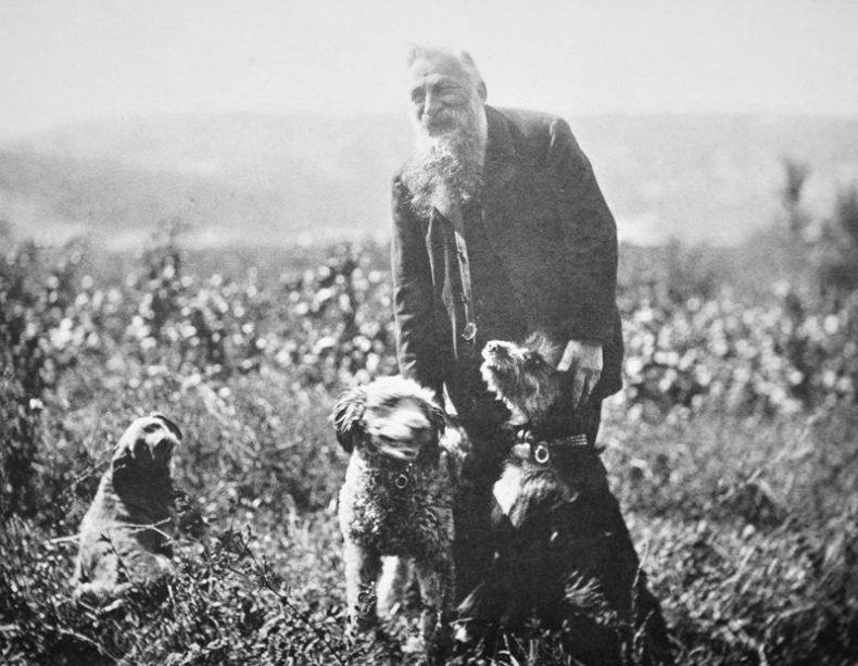 Rodin walking dogs