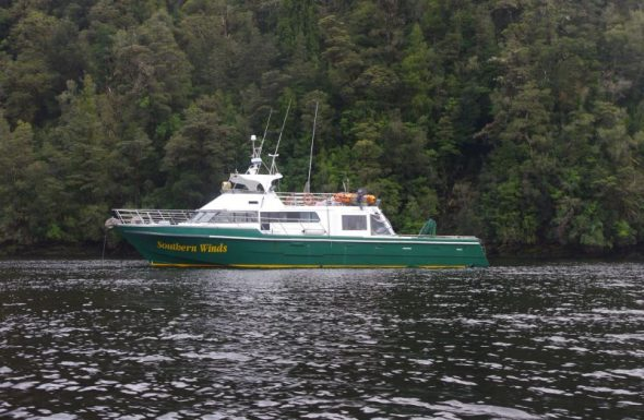 Southern Winds in Cascade Basin at the head of Long Sound. Photo by Colin Miskelly. Te Papa