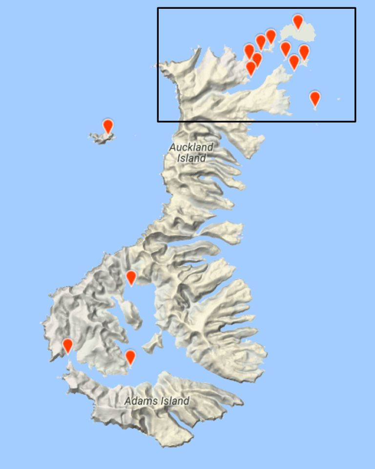 The Auckland Islands, showing sites included in the Te Papa seabird survey. Image derived from eBird records submitted by the team