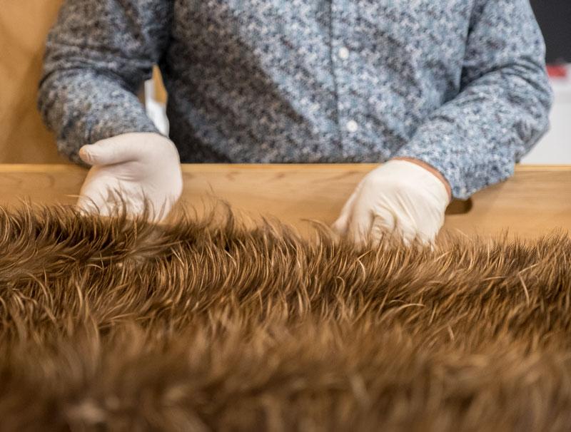 Kiwi feather cloak