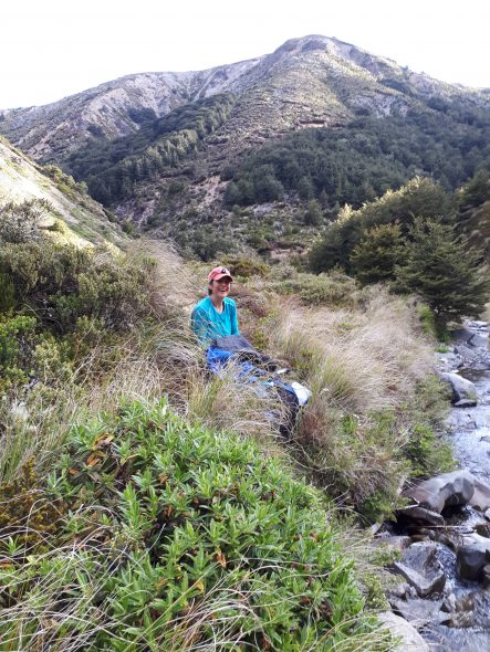 Heidi collecting in the Kaweka Ranges. Photo by Jessie Prebble @ Manaaki Whenua - Allan Herbarium.