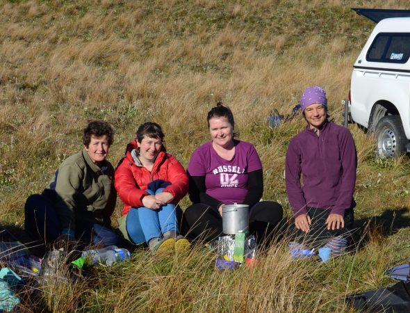 Our awesome team at camp on the Reporoa Bog! Kerry, Jessie, Adell and Heidi. Photo by Kerry Ford @ Manaaki Whenua - Landcare Research.
