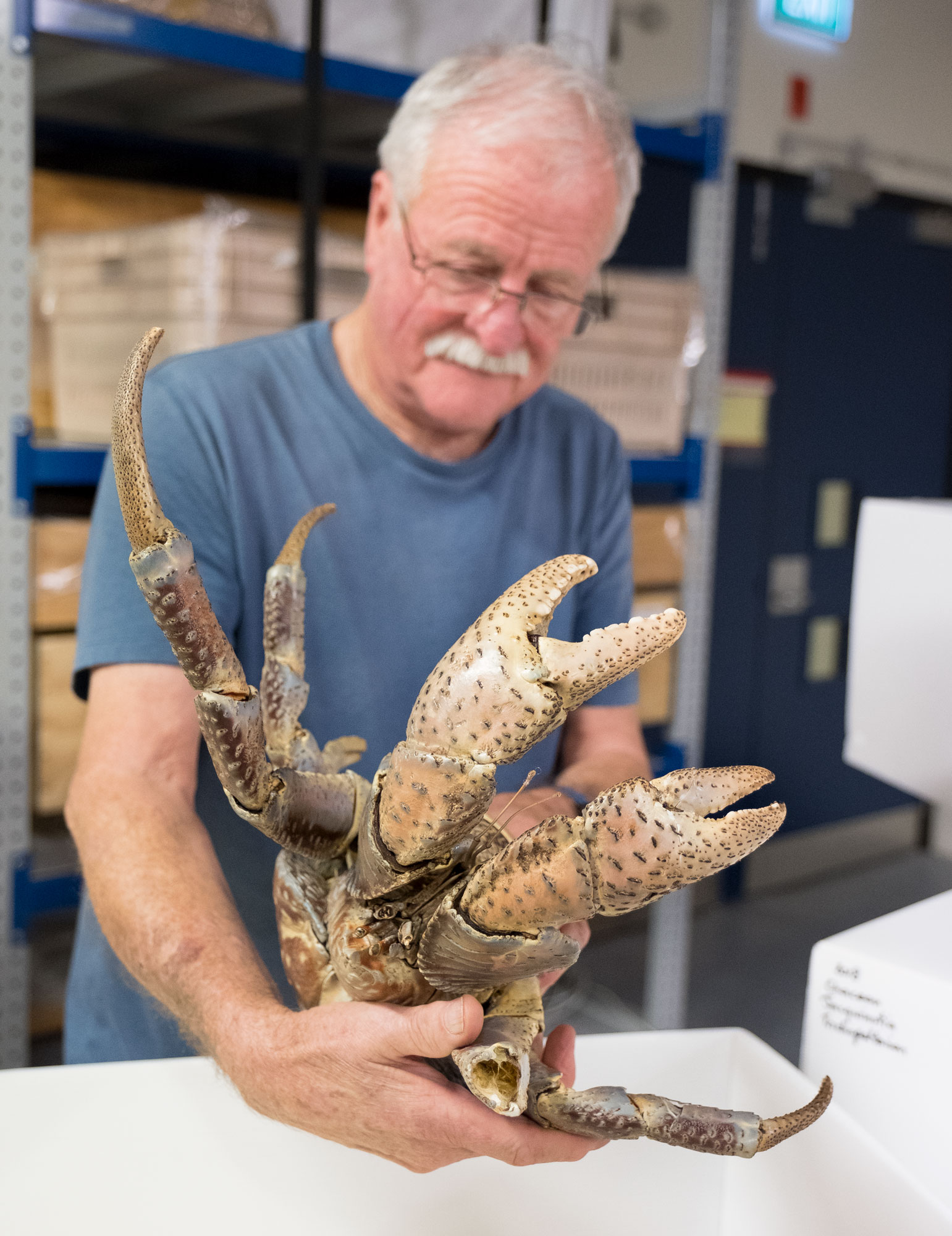 Man holding large crab
